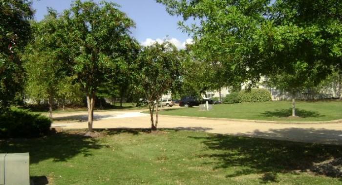 Lush green landscaping